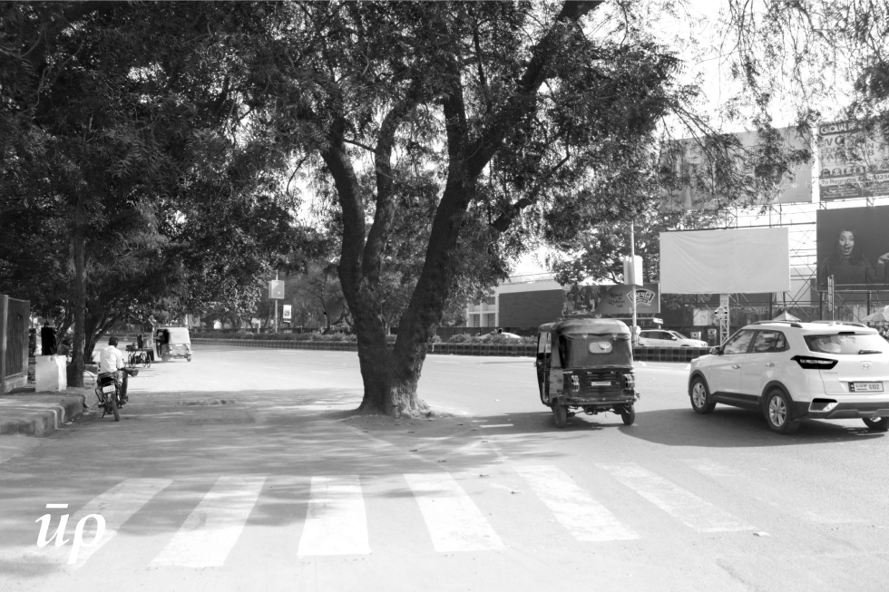 The older trees that have become huge impressive entities on the street was planted when width and uses of the street were very different. They are now found in the middle of the road, very likely to get cut as they poses problem to the growing traffic of Ahmedabad. They present a challenge for design of the public realm.